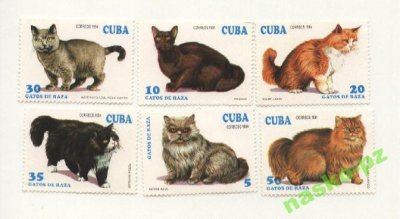 obrázok k predmetu Čiste znamky Mačky