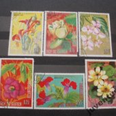 tovar Guinea kvety 6 kusov  vyrobil borivoj