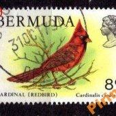 tovar Bermudy - Mi. 356  vyrobil korvin