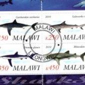 predmet FAUNA - MALAWI - RYB  od korvin