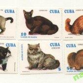 náhľad k tovaru Čiste znamky Mačky