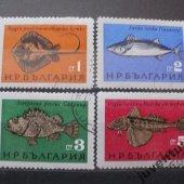 tovar Bulharsko ryby 4 kus  vyrobil lotrinsky